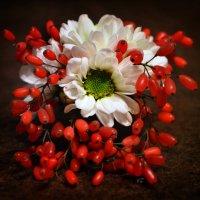 Барбарис и цветы :: Галина Galyazlatotsvet