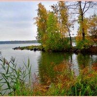 Осень, о.Шарташ :: Геннадий Ячменев