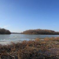 Осенняя река :: раиса Орловская