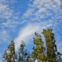 Облака в Анапе :: Елена Нор