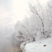 Утро туманное. :: Алексей Хаустов