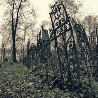 My magic Petersburg_00994_Никольское кладбище :: Станислав Лебединский