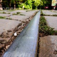 дорога в даль :: Олеся Семенова