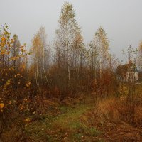 Осень :: bvi1973