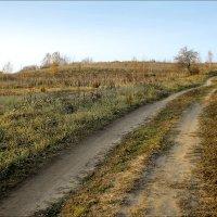 Осенняя дорога :: Виктор (victor-afinsky)