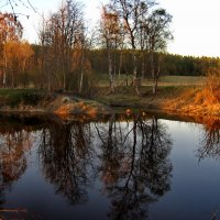 речка... :: Ольга Cоломатина