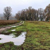 О край дождей и непогоды... :: Лесо-Вед (Баранов)