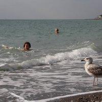 Хорошо на море в октябре. :: Larisa Gavlovskaya