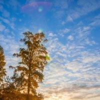 Осенний рассвет :: Алексей Матусевич
