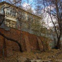 Остатки старины глубокой... :: Ирина Терентьева