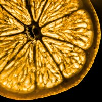 Лимонный закат :: Дмитрий Тарарин