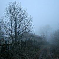 Нынче осень стала строже, День все чаще непогожий... :: Евгений Юрков