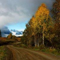 осень... :: Ольга Cоломатина