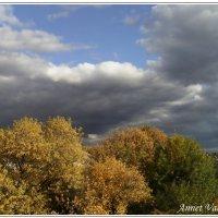 Золотая осень :: Анечка Вакуленко