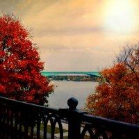 Теплая осень.. :: Emily Rose