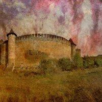 Хотинская крепость :: Taras Oreshnikov