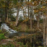 Лесной водопад. :: Виктор Грузнов