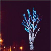 Светящееся дерево (1). :: Владимир Валов
