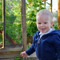 Мой малыш :: Светлана Мальковва