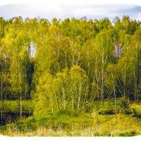 Природа :: Дмитрий17034