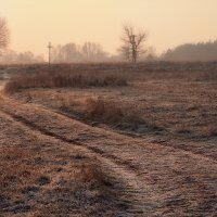 По морозцу... :: Roman Lunin
