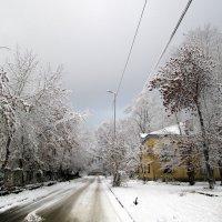 Снег в перспективе :: Натали Акшинцева