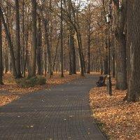 Осень. Парк в Останкино. :: Виктор Семенов