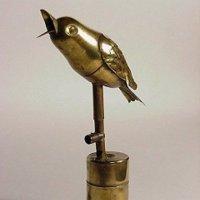 Та самая птичка... :: super-krokus.tur ( Наталья )
