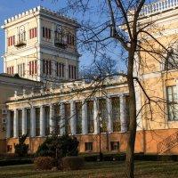 Гомельский дворец Румянцевых-Паскевичей :: Ирина Приходько