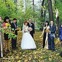 Осінь пора весіль :: Степан Карачко