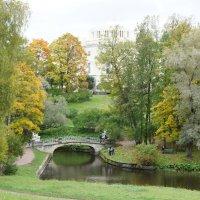 Павловский дворец со стороны Дворцовой запруды :: Елена Павлова (Смолова)