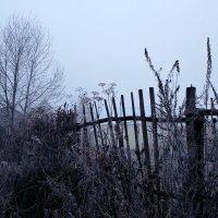 Как грустны сумрачные дни беззвучной осени и хладной... :: Евгений Юрков