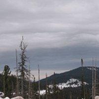 Вид с вершины горы :: Ольга Иргит