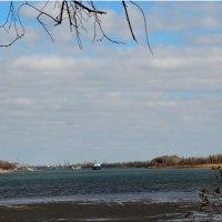 Вид на Дон с Зелёного острова... :: Тамара (st.tamara)