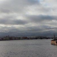 Северная столица :: Ольга Пронина