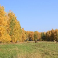 Осень. :: Сергей Крылов