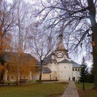 Осенним днём  в  Спасо-Евфимьевом  монастыре... :: Galina Leskova