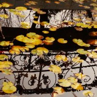 Осенний блюз :: Лилия Гиндулина