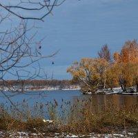 яркая осень :: Galina