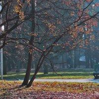 Осенняя идиллия :: Светлана З
