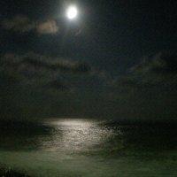 Лунная дорожка :: Ольга ) ...