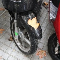 Осень :: vasya-starik Старик