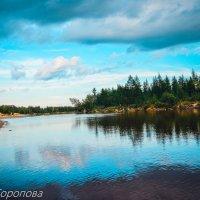река Сэде-Яха :: Раиса Торопова