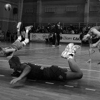Волейбол (Серия) :: Юрий Нестеренко