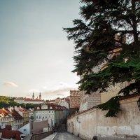 Прага :: Дмитрий Пархоменко