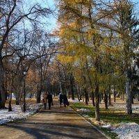Ясный, солнечный, осенний день. В парке. :: Пётр Сесекин
