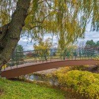 В осеннем парке. :: Gene Brumer