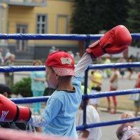 Тренировка. :: Дмитрий Иншин