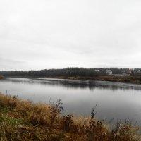 река Луга, ноябрь.... :: Михаил Жуковский