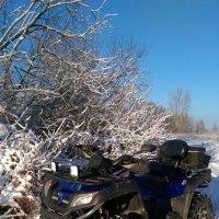 Зима на пороге... :: Юрий Шатерин